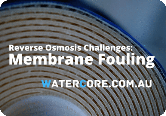 Reverse osmosis membrane fouling challenges